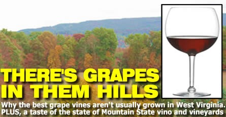 W.Va. Wines: There's grapes in them there hills!